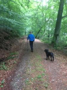man promenerar med gångstavar på skogsväg samt en svart hund som tittar mot kameran