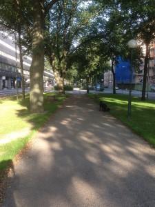 Allé på Karlavägen i Stockholm