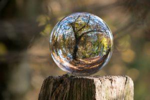 En glasbubbla med ett träd som speglar sig i bubblan